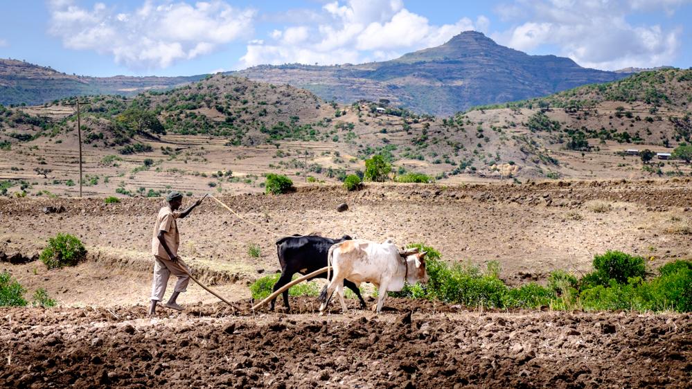 Timpul a stat pe loc pentru agricultorii din Etiopia