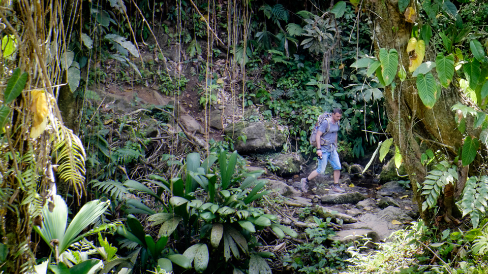 Columbia, 50 km trekking prin jungla.