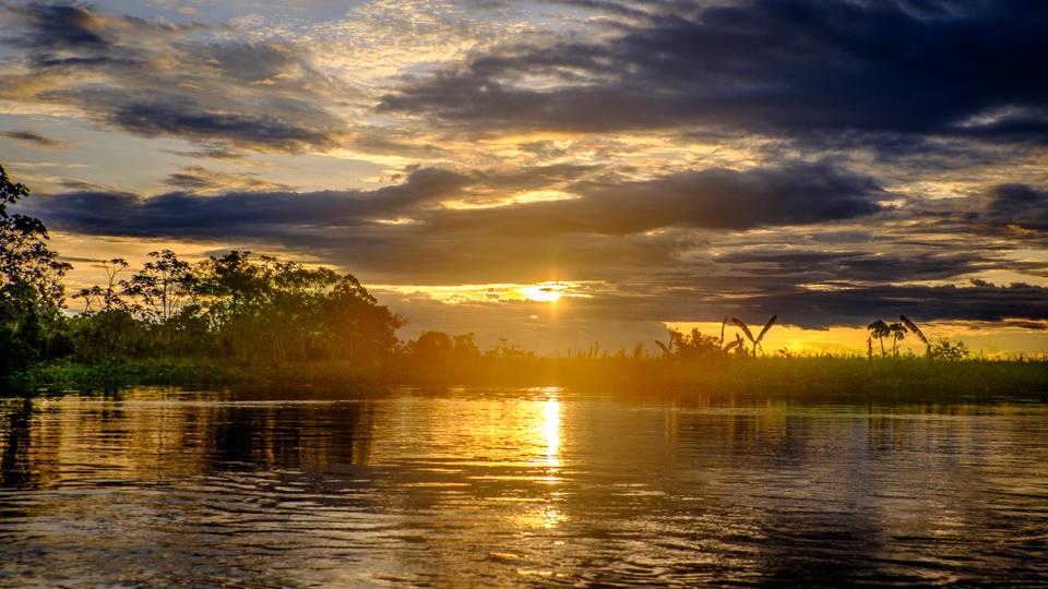 Amazonul are peste 1000 de afluenti, 17 dintre acestia avand peste 1.000 de km lungime
