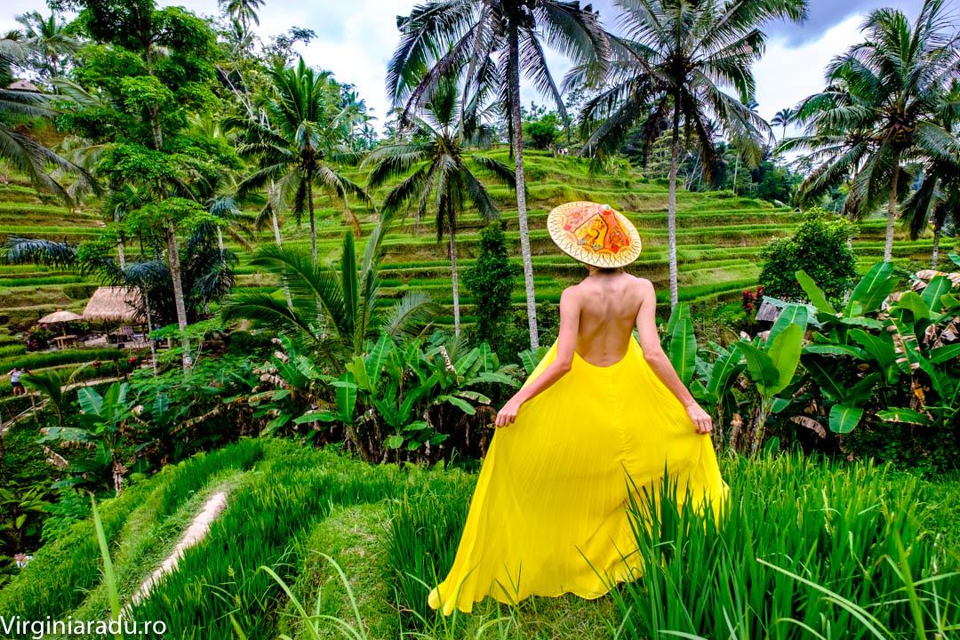 La doar 20 minute de Ubud poti admira aceasta oaza numita Tegallalang
