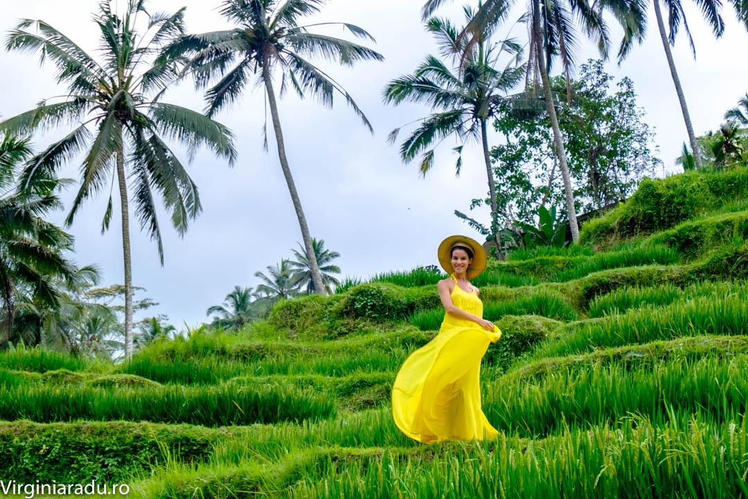 Scurta plimbare pe terasele de orez